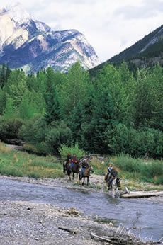 Homeplace Ranch Calgary Canada Horseback Riding Dude Ranch Alberta Priddis