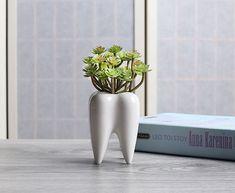 Drop-shaped Hanging Basket Premium Geometry Flowerpot Multifunctional Container Succulent Flower Holder Set Desktop Diamond Shape Flower Shelf Drop Water