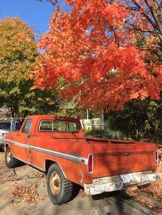 Autumn Tree Autumn Truck