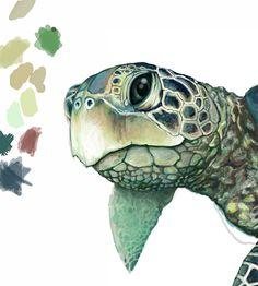 Ellen Schebors Illustration Blog: Sea Turtle