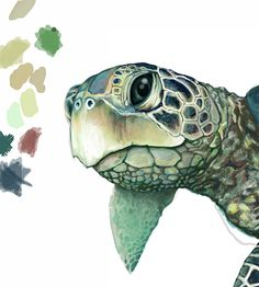 Ellen Schebors Illustration Blog: Sea Turtle