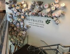 The Guinness World Record display of (number) of hand prints at Nutrilite's Center for Optimal Health in Buena Park, CA.