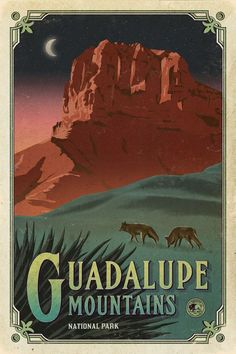 'Guadalupe Mountains National Park Texas, USA Travel Decal' Sticker by MeLikeyTees Texas National Parks, National Park Posters, Party Vintage, Vintage Pink, Guadalupe Mountains National Park, Voyage Usa, Single Travel, Park Art, Poster Series