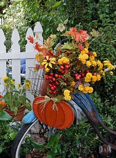 autumn garden display in vintage bicycle basket