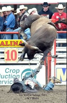 Some things Aspirin just can't help. Rodeo Cowboys, Cowboy Girl, Cowgirl And Horse, Cowboy Up, Cowboy And Cowgirl, Brahma Bull, Pro Rodeo, Cow Cat, Rodeo Events