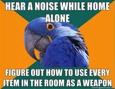 Hear a noise while home alone...