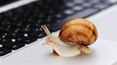 Une connexion Wi-Fi trop lente, c'est sacrément énervant ! Et c'est encore plus stressant quand on a du travail à faire ! Heureusement, il existe une solution pour y remédier. Voici l'ast