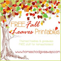 FREE Fall Leaves Printables | Homeschool Giveaways