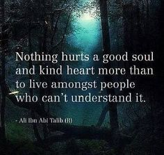 Nothing hurts a good soul & a kind heart more than to live amongst people who can't understand it. Or who take advantage of & abuse it.