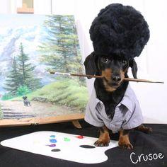 """Crusoe is """"Dog Ross"""""""