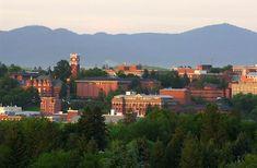 Washington State University. Go Cougs!