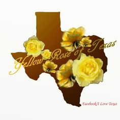 Yellow roses of Texas Texas Quotes, Texas Gifts, Texas Forever, Loving Texas, Texas Pride, Lone Star State, Cowboy Art, Cross Stitch Rose, My Face Book