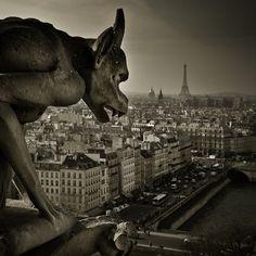 Paris Gargoyle 2 by Phil-Norton.deviantart.com