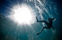 The Under Water Project by Mark Tipple