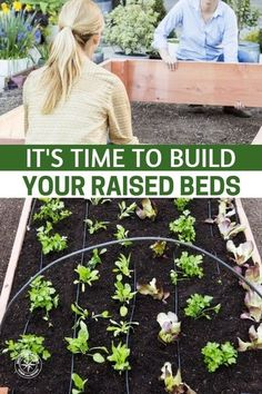 It's Time To Build Your Raised Beds! Get The Know How — It's nearly that time of year when you have to start building your raised beds and planning your garden. This is my favorite time of the year! Spring and gardening = Awesome. #garden #gardening #gardeningtips #homestead #homesteading #spring #springgarden #springgardening #raisedgardenbed #diyraisedgardenbed #diy