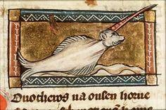 Dierenopvattingen en -voorstellingen in de stand van de kennis in de 13de eeuw. (Caroline Everaert)