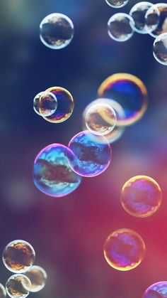 Burbujas | Bubbles