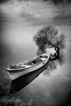O Perfume:     Do novelo emaranhado da memória, da escuridão ...