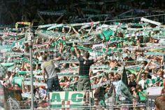 Europa League: Trencin - Rapid Wien Betting Preview   http://www.clubgowi.com/sportsbettingadvice/uefa-europa-league-betting-preview-trencin-rapid-wien