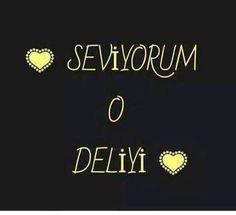 deLiyi..