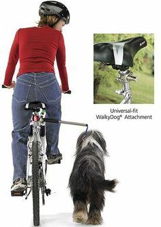 Para salir a pasear con el perro ... <3