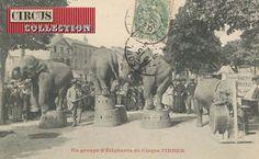 Cirque Pinder début du 20 eme siècle