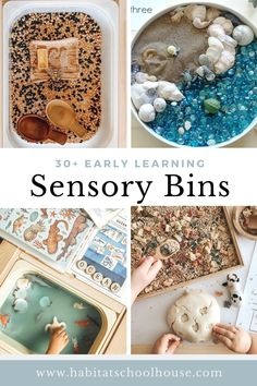 30+ Sensory Bins for Early Learning