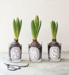 #9straatjesonline #flowering #spring #diptyque #candles #inspiration http://www.9straatjesonline.com/nl/lifestyle/scented-candle-figuier-190gr.html