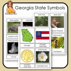 Georgia State Symbols Cards - 12 cards in this set