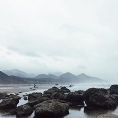 "63 Likes, 2 Comments - Natalie Knight Funk (@natfunk) on Instagram: ""pacific coast beaches just won my heart (despite the rain & wind, that fog I mean✨)"""