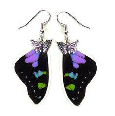 Earrings made with the wings of the Graphium Wiskei! Beautiful and small :)