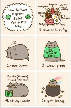 pusheen the kitten's Saint Patrick's Day Chat Pusheen, Pusheen Love, Kawaii 365, Chat Kawaii, Crazy Cat Lady, Crazy Cats, I Love Cats, Cool Cats, Pusheen Stormy