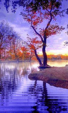 Foto: Tüm dostlarıma mutlu keyifli akşamlar diliyorum.. :)  Good evening friends.. :)  #Mutlu #Akşamlar