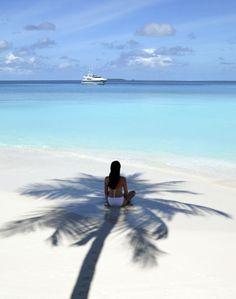#Maldives #palmtree and #sunshine