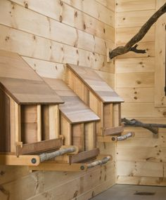Interior idea.  I really like the roosts being old branches.  Looks pretty cool!