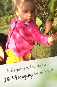 Everything you need to know to get started wild foraging with kids | Wilder Child