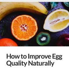New Blog Post How to Improve Egg Quality Naturally hellip