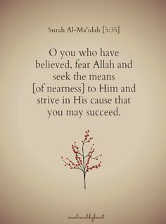 muslimahbyheart:  Success is from Allah alone. So, go towards Allah and Allah will bring you closer to success.