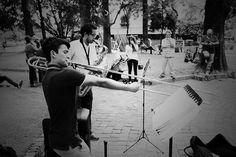 Saliditas | Flickr: Intercambio de fotos