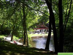 Het Chalet vanuit het bos Bosbeek /Santpoort