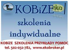 Szkolenia Kobize, wprowadzenie do raportu Kobize, tel 502-032-782, indywidualne szkolenia z wykonania raportu kobize, Wrocław, Poznań, Opole, Łódź, Wałbrzych, Jelenia Góra, Leszno, Rawicz,
