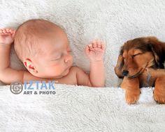 Próximamente nuevos modelos y colecciones de cuadros para decorar tu espacio Sleeping Puppies, Baby Puppies, Comfy Dog Bed, National Puppy Day, Sleep Schedule, Family Dogs, New Puppy, Baby Sleep, Snuggles