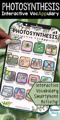 Photosynthesis Interactive VocAPPulary™ This creative resource is a simple, yet effective way for students to learn vocabulary on a specific topic!  Students will design and illustrate an app for each vocabulary term after defining them. So easy to put together, just cut and paste! (instructions included)  Vocabulary words included in this set: photosynthesis, chloroplasts, chlorophyll, xylem, epidermis, transpiration, root pressure, capillary action, respiration, prokaryotic