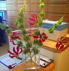 My office flowers  #flowers #office #room #dentistry #dentist #myphotography #munich #germany #decor #color #happy #beautifulflowers #instaflower #flowerphotography #world #worldofdentistry #practice #work by vickyst78 Our General Dentistry Page: http://www.myimagedental.com/services/general-dentistry/ Google My Business: https://plus.google.com/ImageDentalStockton/about Our Yelp Page: http://www.yelp.com/biz/image-dental-stockton-3 Our Facebook Page: https://www.facebook.com/MyImageDental…