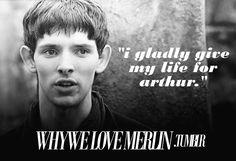 why we love merlin