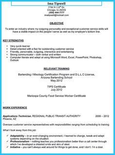 PDF templates for CV or Resume   pdfCV com Resume Format Download
