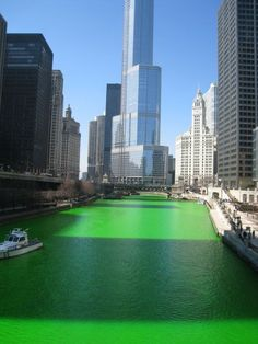 Best view in the city! Green river on St. Patrick's Day Friday with Trump Chicago in the background.this is awesome! Chicago Green River, The Places Youll Go, Places To See, Trump Chicago, Chicago Chicago, Chicago Illinois, St Patrick's Day Traditions, Happy St Patricks Day, Saint Patricks