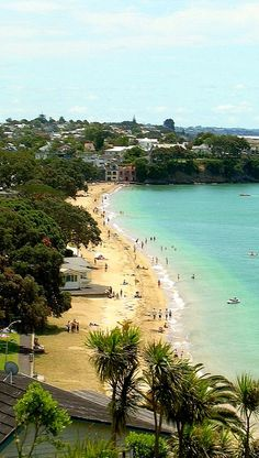 Cheltenham Beach, North Shore, Auckland, New Zealand