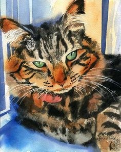 Maine Coon chat tigré Art aquarelle peinture d'impression