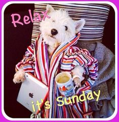 Relax its Sunday!